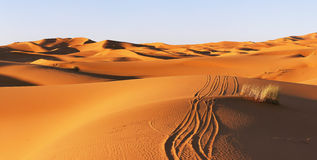 Dunas del desierto de Sáhara imagenes de archivo