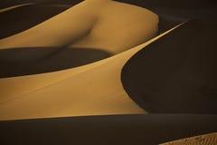 Dunas del desierto de Sáhara Imagen de archivo libre de regalías