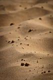 Dunas del desierto, detalles Imagen de archivo libre de regalías