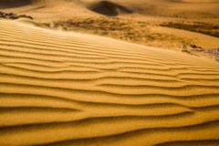 Dunas del desierto y de arena dubai Imagen de archivo