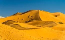 Dunas del ergio Chebbi cerca de Merzouga en Marruecos imagenes de archivo