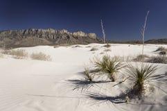 Dunas del lavabo de la sal en Guadalupe Mountains National Park Imagen de archivo