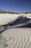 Dunas del lavabo de la sal en Guadalupe Mountains National Park Fotografía de archivo libre de regalías