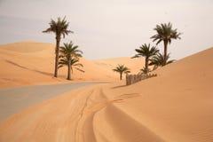 Dunas do deserto da areia Fotografia de Stock