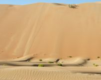 Dunas do deserto de Liwa Fotografia de Stock Royalty Free