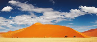 Dunas do deserto de Namib Imagem de Stock