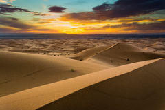 Dunas do deserto de Sahara foto de stock royalty free