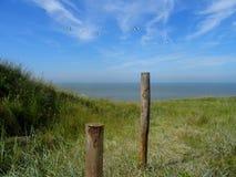 Dunas do Mar do Norte Fotos de Stock Royalty Free