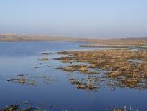 Dunas do parque nacional de Texel Foto de Stock