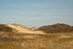 Dunas do Zwin, reserva natural ao lado da costa belga Imagens de Stock
