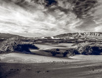 Dunas e pegadas de areia Imagem de Stock