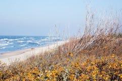 Dunas e a praia Fotografia de Stock