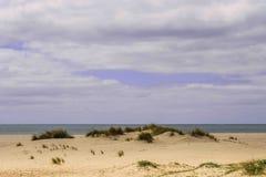 Dunas em uma praia em Huelva, Espanha com o Oceano Atlântico no Imagens de Stock Royalty Free
