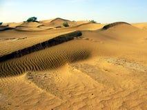 Dunas en el desierto de Chebbi del ergio Foto de archivo libre de regalías