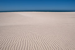 Dunas en la playa Imagen de archivo