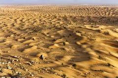 Dunas en Sahara Desert, Túnez foto de archivo libre de regalías
