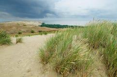 Dunas inoperantes em Neringa, Lituânia. Fotos de Stock Royalty Free