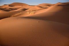 Dunas, Marruecos, Sahara Desert Fotos de archivo