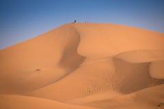 Dunas, Marruecos, Sahara Desert Fotos de archivo libres de regalías