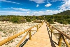 Dunas na reserva natural Zahara de los Atunes, Espanha foto de stock