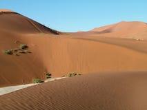 Dunas no deserto Fotografia de Stock Royalty Free