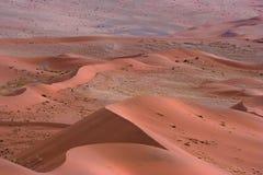 Dunas rojas Fotografía de archivo libre de regalías