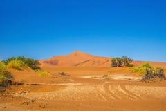 Dunas rojas de Sossusvlei debajo del cielo azul en el día soleado Fotos de archivo