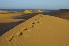 Dunas6 Royalty Free Stock Images