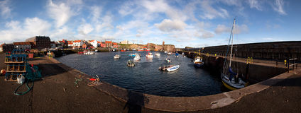 Dunbar harbour Royalty Free Stock Image