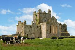 Dunbrody Abbey. county Wexford. Ireland. Stock Image