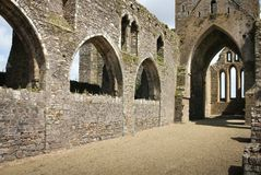 dunbrody abbey ståndsmässiga Wexford ireland Arkivfoton