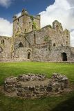 dunbrody abbey ståndsmässiga Wexford ireland Arkivfoto