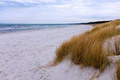 Dune à la mer baltique, Ruegen, Allemagne image stock