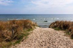 Dune à la mer baltique, Ruegen, Allemagne photos libres de droits