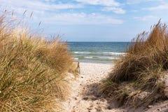 Dune à la mer baltique, Ruegen, Allemagne images libres de droits