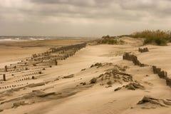 Dune 001a dell'isola del pisello Fotografia Stock