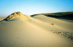 Dune Fotografia Stock Libera da Diritti