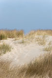Dune Stock Images
