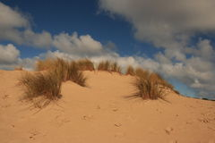 Dune. Picture of a dune with vegetation royalty free stock photos