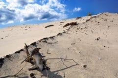 Dune images libres de droits