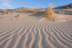Dune photos stock