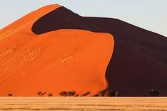 Dune. Dune 45 in namib-naukluft national park, namibia Royalty Free Stock Photos
