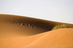 Dune. Desert sand dune in namibia africa Royalty Free Stock Photos