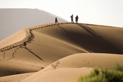 Dune. Desert sand dune in namibia africa Stock Photos