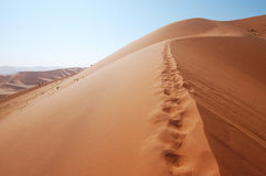 Dune Royalty Free Stock Images