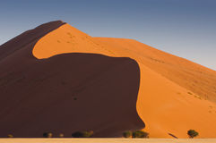 Dune 44. Red dune of the namib desert at sundown (suouth of the famous dune 45 royalty free stock image