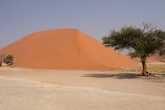 Dune 45. Near Sossusvlei in the Namib Desert, Namibia Royalty Free Stock Image