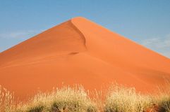 Dune 45 in namib desert Stock Photo