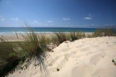 Dune royalty free stock photos