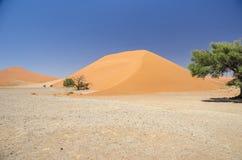 Dune 45 Photographie stock libre de droits